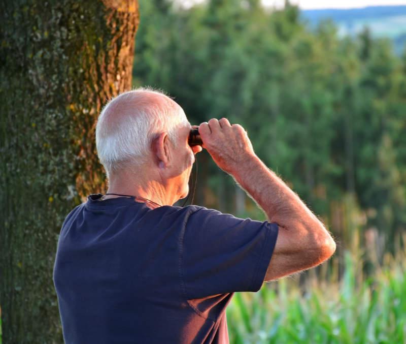 Senior Residence Borne - obserwacja